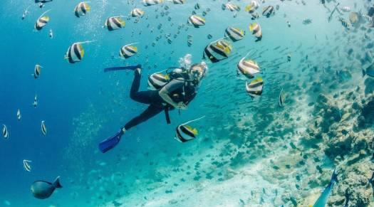 Diving at Gili Lankanfushi