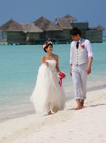 Honeymoon & Weddings
